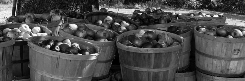 Jus de Fruits artisanal haut de gamme naturel Chateau du Clau paniers